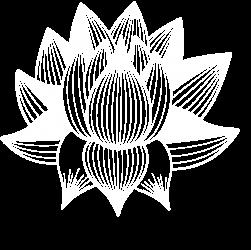 QiGong TaiChiChuan Méditation *****